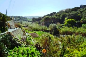 Lunzjata Valley - Gozo