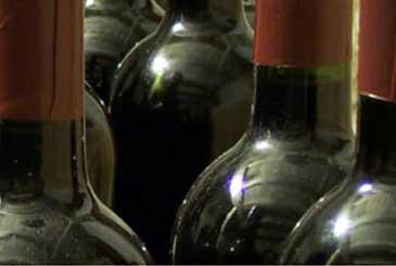 Malta's Wines & Vineyards